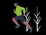 Zinereo Probióticos nutrición deportiva
